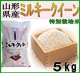 山形県産米 28年度 新米 ミルキークイーン 5kg (玄米)