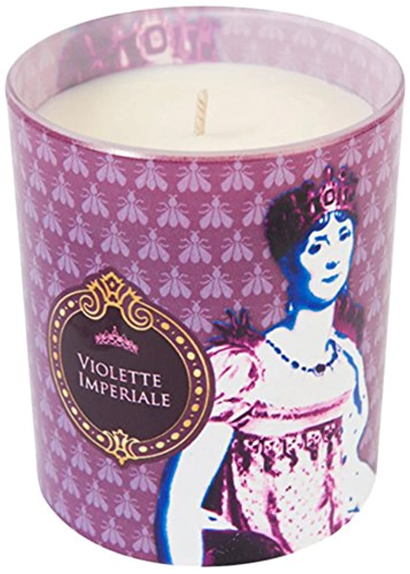 ナラーバー圧縮初期ヒストリア ポップアートキャンドル ウ゛ィオレット スミレの花の香り
