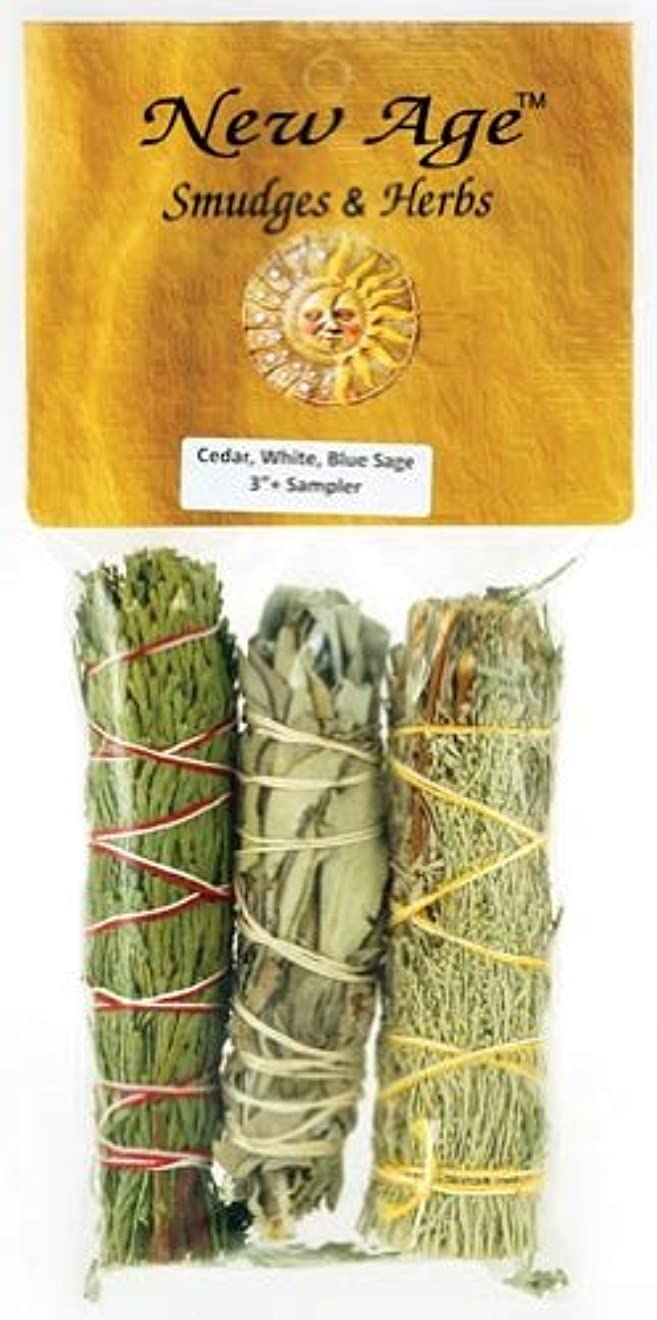 アイスクリーム保安クリアAzureGreen RS3BWC 4 in. Sage Smudge Stick in Cedar, White & Blue - 3 Packs by AzureGreen [並行輸入品]
