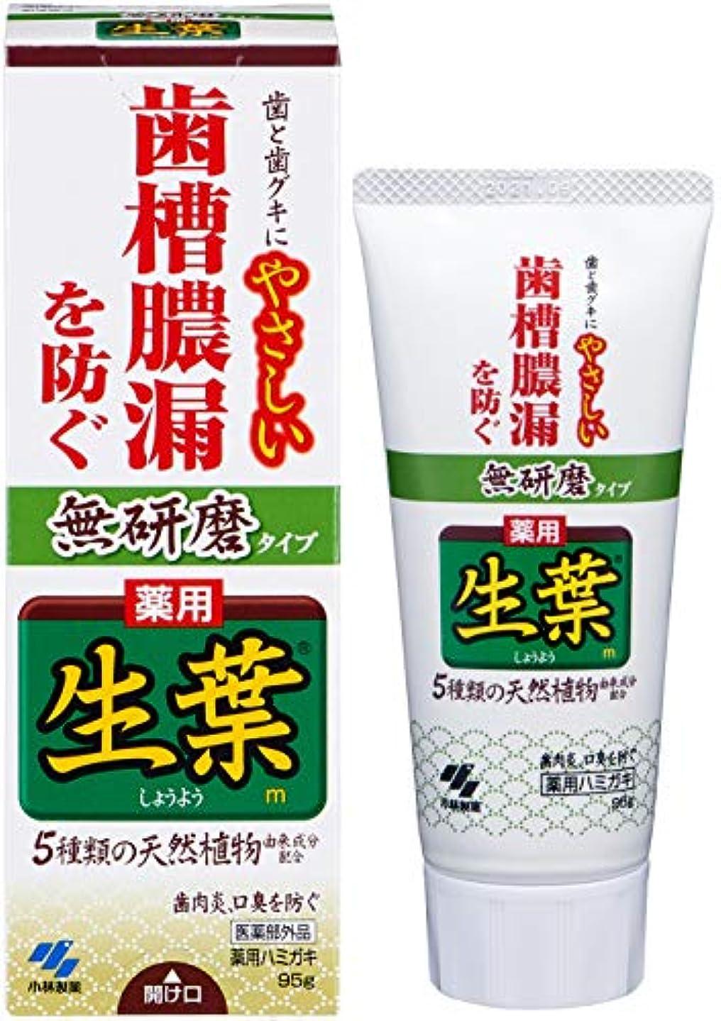 画像つらい増強する生葉(しょうよう) 無研磨タイプ 歯槽膿漏を防ぐ 薬用ハミガキ ハーブミント味 95g 【医薬部外品】