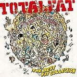 DA NA NA feat.TAKUMA(10-FEET)♪TOTALFATのCDジャケット