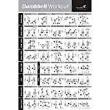 (50cm x 80cm ) - Dumbbell Workout Exercise Poster - NOW LAMINATED - Strength Training Chart - Build Muscle, Tone & Tighten - Home Gym Weight Lifting Routine - Body Building Guide w/ Free Weights