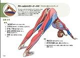 図解YOGAアナトミー:アーサナ編 - 医師が解説するヨガの機能解剖学 画像