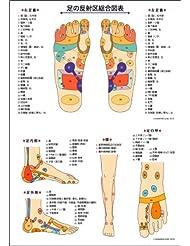 反射区ポスター(A2サイズ) 症状別反射区一覧付き(裏面)