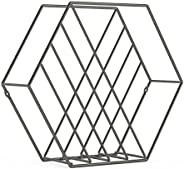 Umbra Zina Magazine Rack & Record Holder, Perfect for Vinyl Record Storage, Stands or Mounts to Wall, Tita