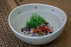 テーブルに癒やしを 小鉢に金魚 エサのいらない金魚小鉢セット