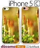 iPhone 5C ケース アイフォン 5c カバー iphone 5c 名入れ 文字入れ スマートフォン スマホケース スマホカバー おしゃれ 風景 写真 つくし 春 ポリカーボネート ハードケース