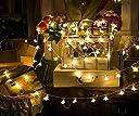 イルミネーションライト 装飾LED星型ストリングライト 室内外 装飾 結婚式 お庭など対応 パーティー 飾り ライト 正月 クリスマス 飾り バレンタインデー 防水 6m 40球 電池式 2パタンで切替可 電飾 (昼白色)