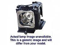 ダイヤモンドランプfor BenQ mx520プロジェクタ、ハウジング内Philipsバルブ