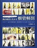 写真とエビデンスで歯種別に学ぶ!  歯内療法に生かす根管解剖