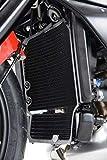 R&G(アールアンドジー) ラジエターガード アルミニウム チタン(カラー) Rivale800(14-)、Stradale800(15-)、Turismo Veloce 800(15-) RG-RAD0167TI