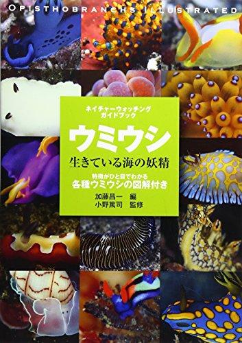 ウミウシ―生きている海の妖精 (ネイチャーウォッチングガイドブック)の詳細を見る