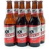 メキシコ産 テカテ ビール 355ml 瓶×6本セット