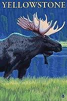 ムースat Night–イエローストーン国立公園 12 x 18 Art Print LANT-14221-12x18