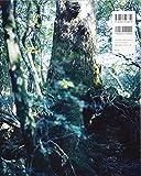 上田義彦写真集 FOREST  ー 印象と記憶 1989-2017 画像