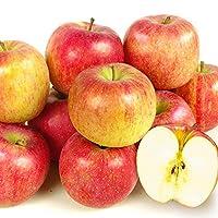 国華園 青森産 ご家庭用 北斗 約20kg1箱 木箱 りんご