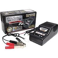 プロセレクトバッテリー:バッテリードライバー