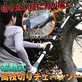 家庭用電動高枝切りチェンソー 高枝健太郎くん ET1208 単品 【1点】