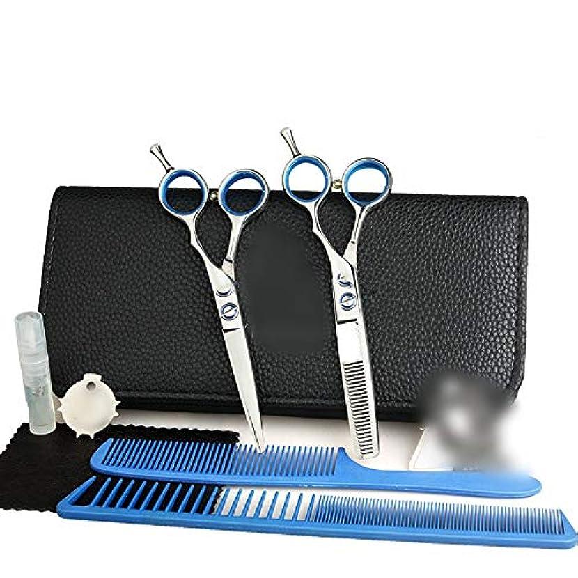 一瞬スティック沿ってGoodsok-jp 5.5インチ理髪はさみセット、平らな歯のはさみ理髪はさみセット (色 : Silver)