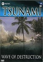 ABC News: Tsunami - Wave of Destruction [DVD] [Import]