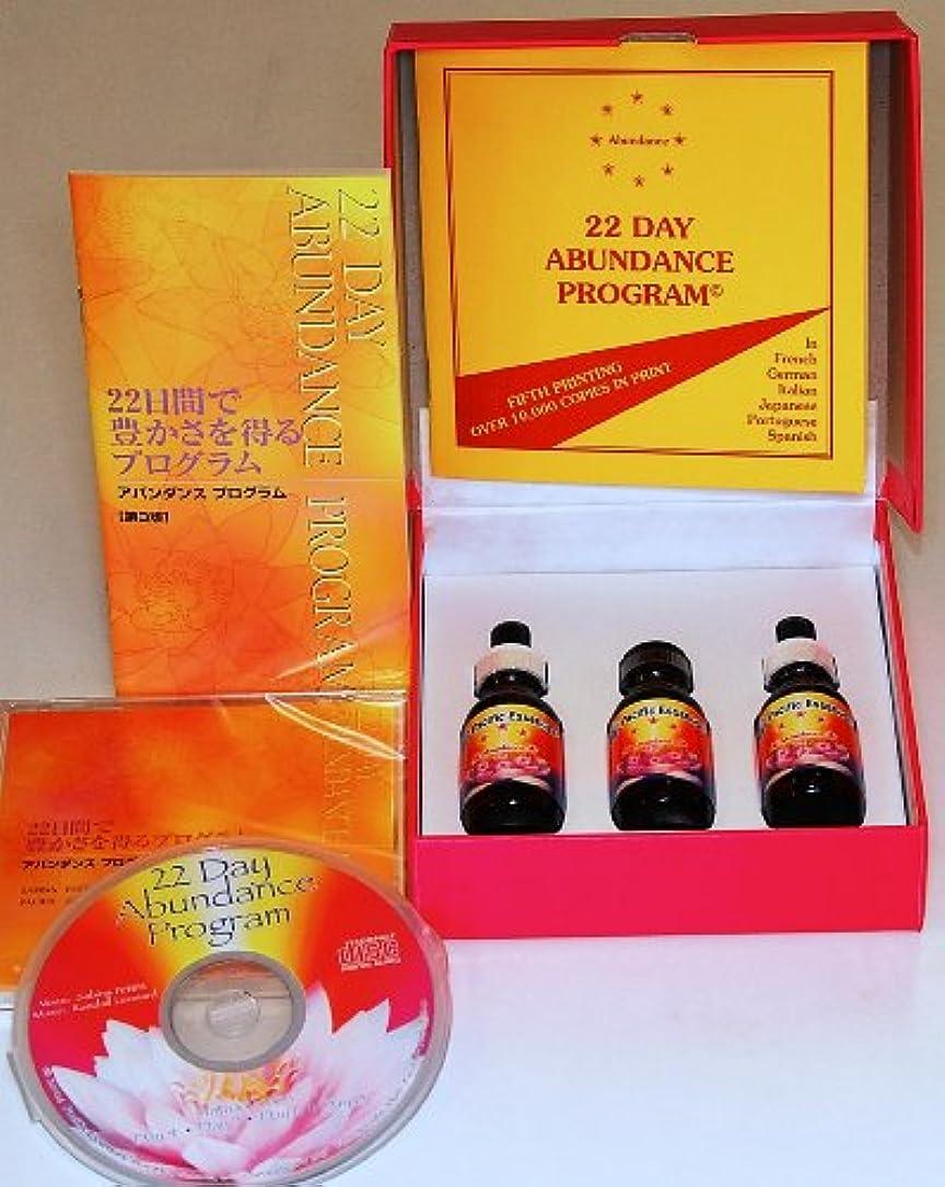 アバンダンス プログラム セット 日本語訳 日本語版CD付