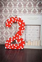 CSFOTO 背景幕 3×5フィート 2年目の誕生日パーティー用 装飾 写真 背景 赤 花 暖炉 女の子 誕生日 洗面所の飾り 家族のお祝い 子供 写真 スタジオ小道具 ポリエステル壁紙