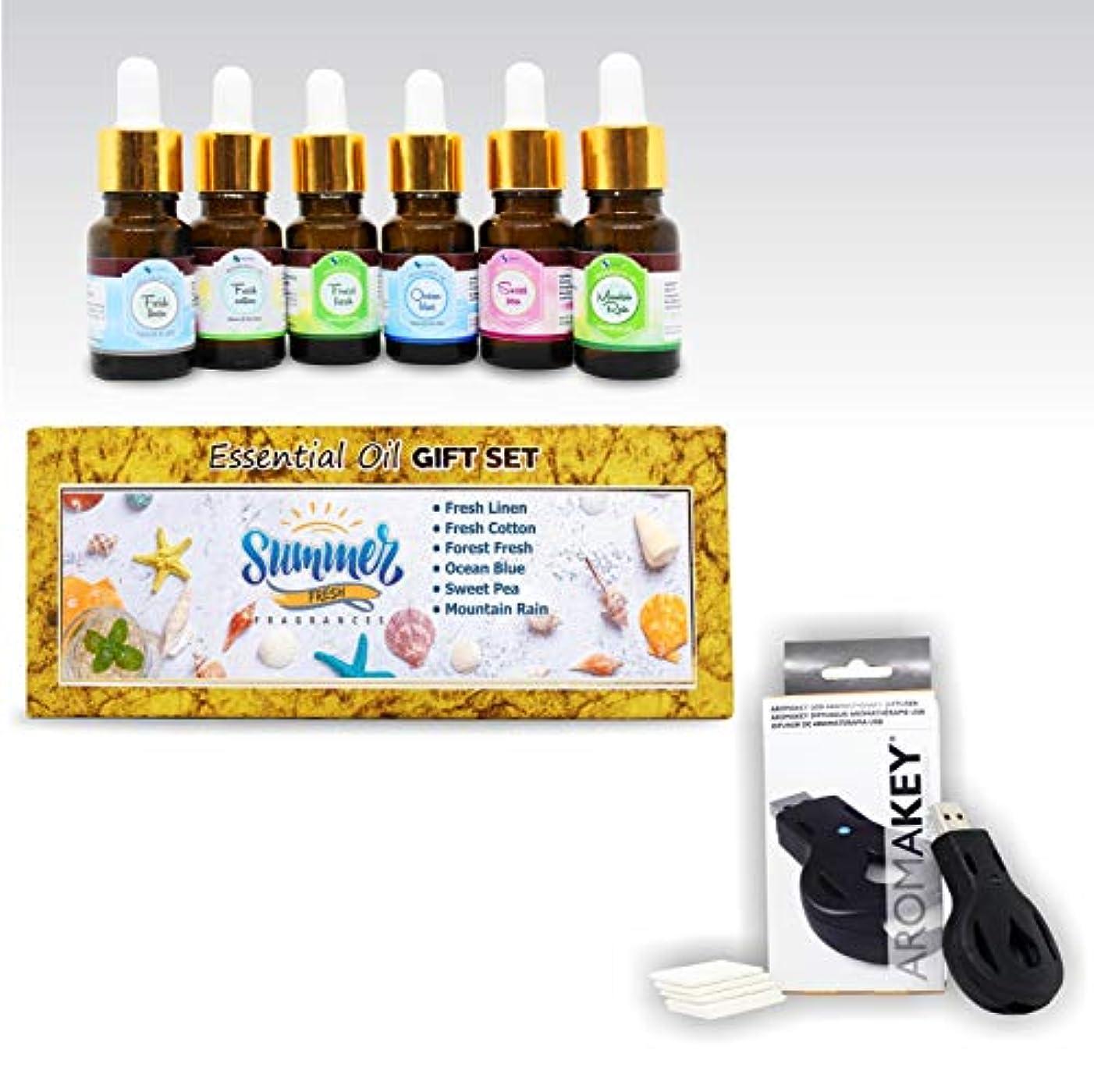 祝う持続する光景Aromatherapy Essential Oils - Summer Fresh (Pack of 6) 100% Pure & Natural Plus Aromakey USB Personal Diffuser...