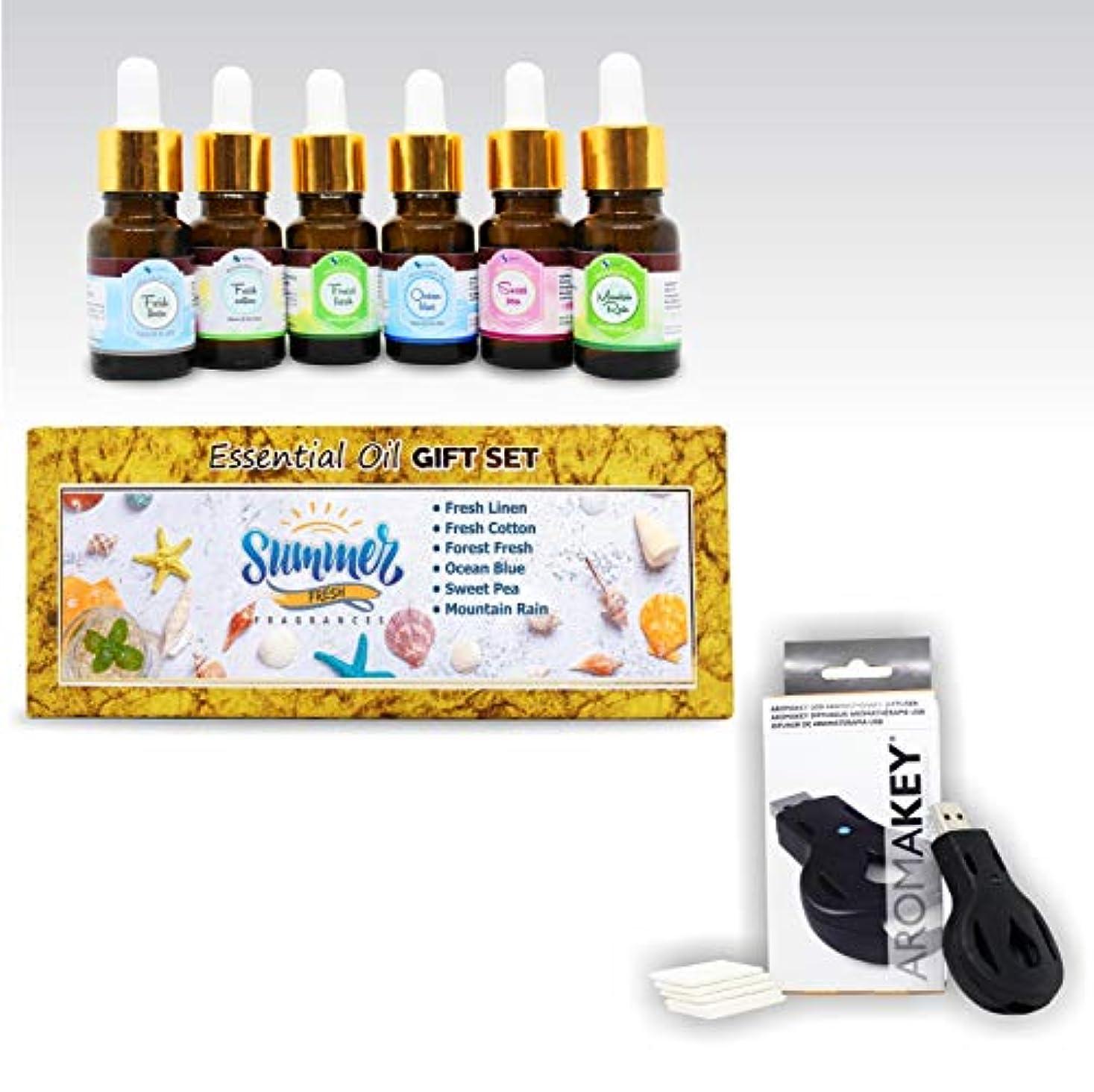 証言コンクリートスリチンモイAromatherapy Essential Oils - Summer Fresh (Pack of 6) 100% Pure & Natural Plus Aromakey USB Personal Diffuser...