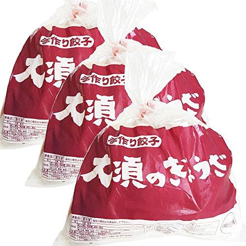 浜松餃子 大須のぎょうざ [ 王道 浜松ぎょうざ<レギュラー味>] x 3袋(1袋20個入、合計60個)