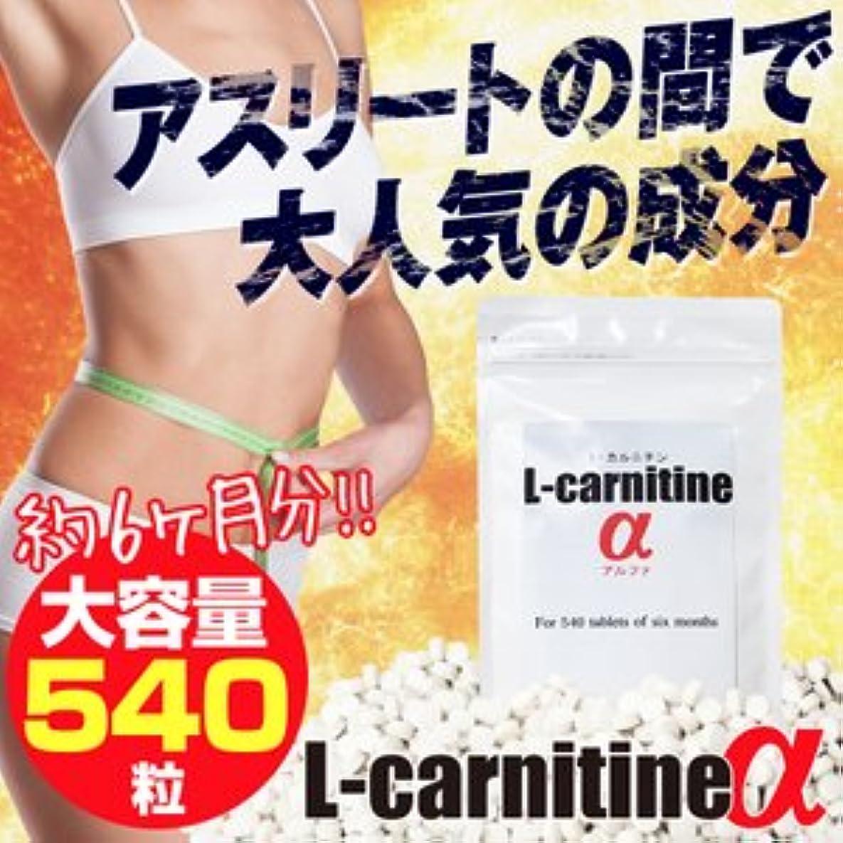 接触強盗オリエンテーションL-carnitineα(L-カルニチンα)