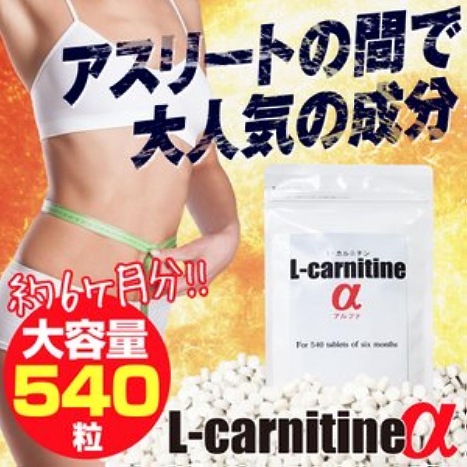 出演者鼓舞する病的L-carnitineα(L-カルニチンα)