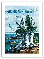 太平洋岸北西部 - グレイハウンド - ビンテージな世界旅行のポスター によって作成された S.フレミング c.1958 -プレミアム290gsmジークレーアートプリント - 46cm x 61cm