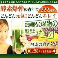 低カロリーで栄養豊富な濃縮酵素青汁 酵素の導き222 100g