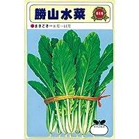 水菜 種 勝山水菜 小袋(約50ml)