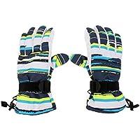 Dovewill 冬 暖かい 防水 防風 スノーボード スキー スポーツ手袋 恋人同士 スノーボードミトン 全4色4サイズ
