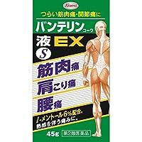 【第2類医薬品】バンテリンコーワ液EX 45g ×2 ※セルフメディケーション税制対象商品