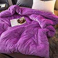 WCH フランネルキルト、冬のキルト、厚く暖かい豪華なキルト、フリースダブルシングルパーソナル、寝室用ホテル子供部屋 (Color : 紫の, サイズ : 180x220cm(71x87inch))