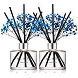 Cocod'or Preserved Real Flower Reed Diffuser/Aqua Marine / 6.7oz(200ml) / 2 Pack/Reed Diffuser Set, Oil Diffuser & Reed Diffu