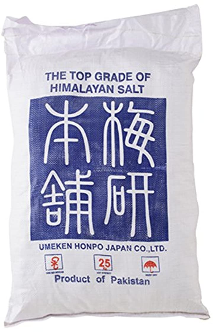 いつでも水を飲む産地ヒマラヤ岩塩 バスソルト ピンク あら塩 25kg