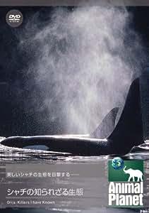 アニマル・プラネット シャチの知られざる生態 [DVD]