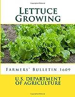 Lettuce Growing: Farmers' Bulletin 1609