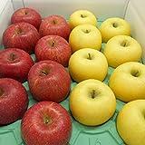 りんごおすすめ2品種詰合せ Bランク (マル特) 約5kg [CA貯蔵] 長野産 (14玉~18玉)発送可能な2品種