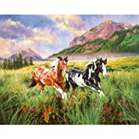 SunsOut – Carla D 'aguanno – Mountain Stroll – Miniジグソーパズル – 100 pc by SunsOut