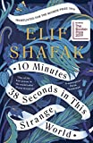 10 Minutes 38 Seconds in this Strange World (English Edition) 画像