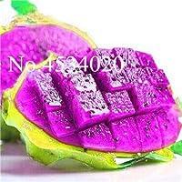 100ピース甘いピタヤ盆栽植物龍の果樹園ピタヤのフロア非GMO Hylocereusフルーツの種子:23