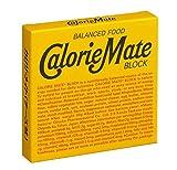 大塚製薬 カロリーメイト ブロック チーズ味 4本×10箱