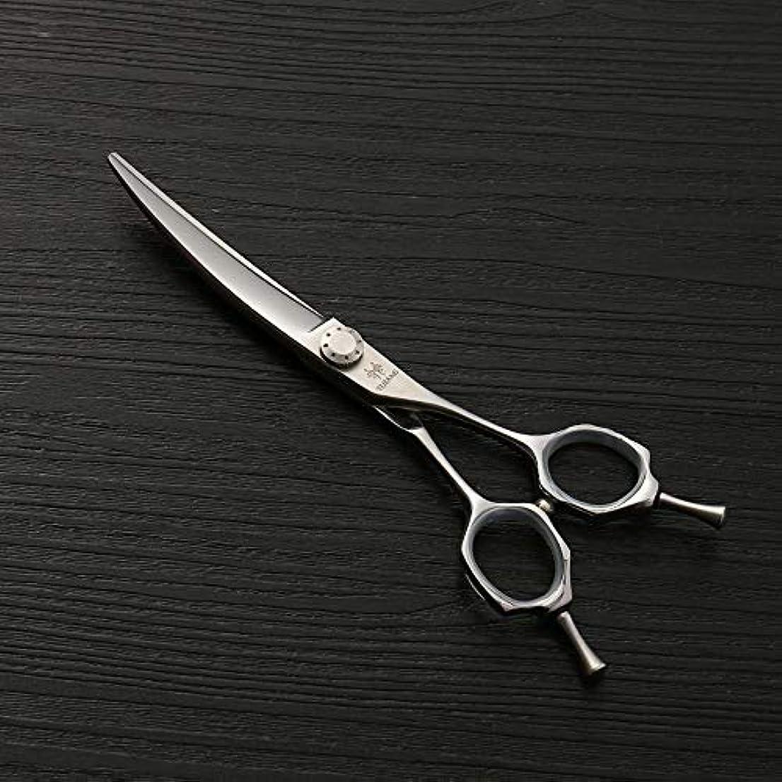 アラブサラボご覧ください知恵理髪用はさみ 6.0ファッション散髪はさみ、ヘアスタイリストのトレンド、440Cステンレス鋼理髪はさみ毛の切断はさみステンレス理髪はさみ (色 : Silver)
