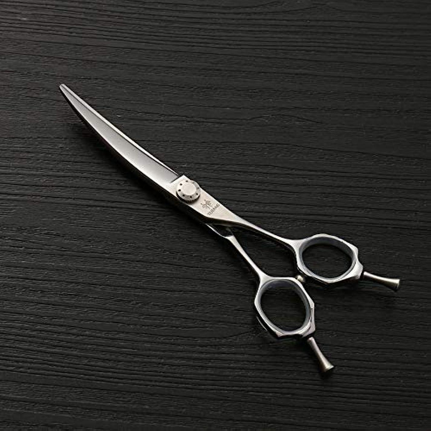 鉄道駅満員ウルル440Cステンレス鋼理髪はさみ、6.0ファッション散髪はさみ、ヘアスタイリストの動向 ヘアケア (色 : Silver)
