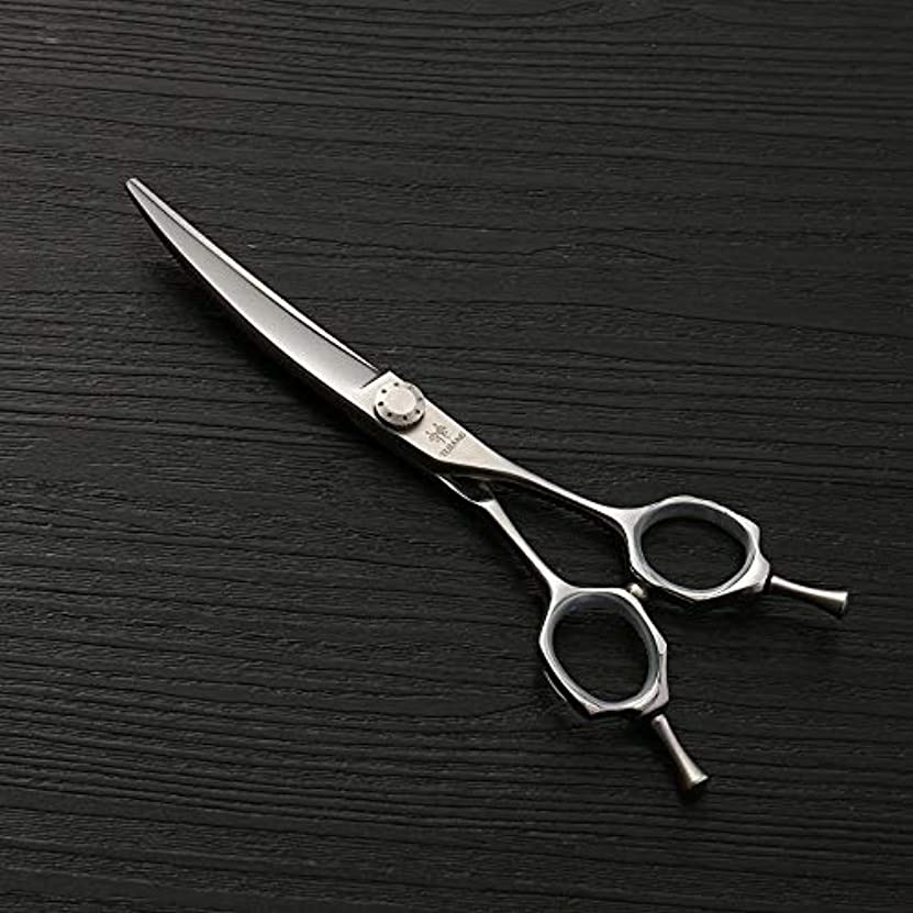 角度テーマ周波数理髪用はさみ 6.0ファッション散髪はさみ、ヘアスタイリストのトレンド、440Cステンレス鋼理髪はさみ毛の切断はさみステンレス理髪はさみ (色 : Silver)