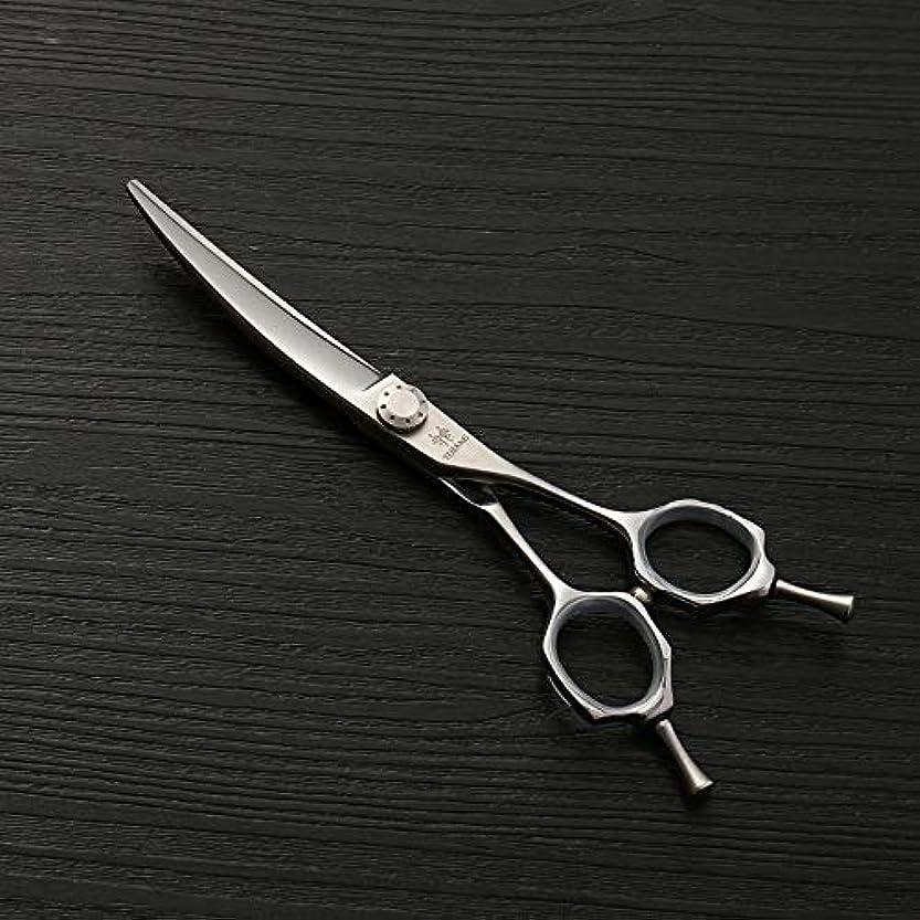 学ぶ桁旋律的理髪用はさみ 6.0ファッション散髪はさみ、ヘアスタイリストのトレンド、440Cステンレス鋼理髪はさみ毛の切断はさみステンレス理髪はさみ (色 : Silver)